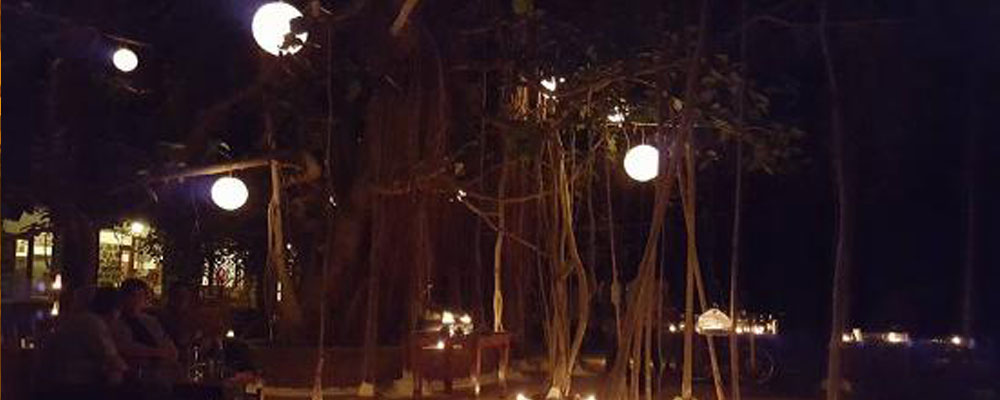 Bandhav-Vilas-Luxury-Resort-4
