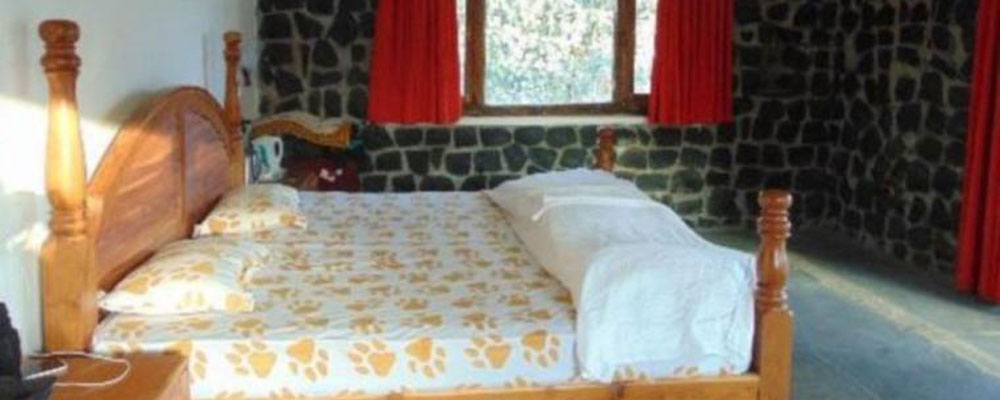 Bandhavgarh-Meadows-Resort2