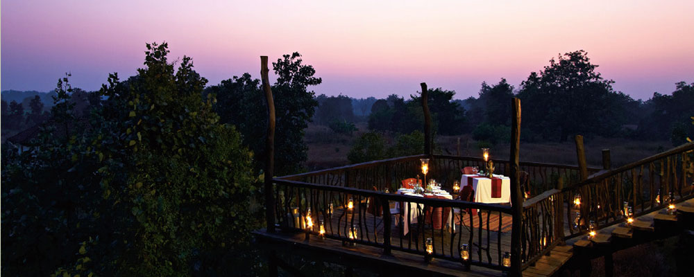 Samode-Safari-Lodge