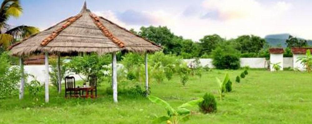 The-Sun-Resort-Bandhavgarh