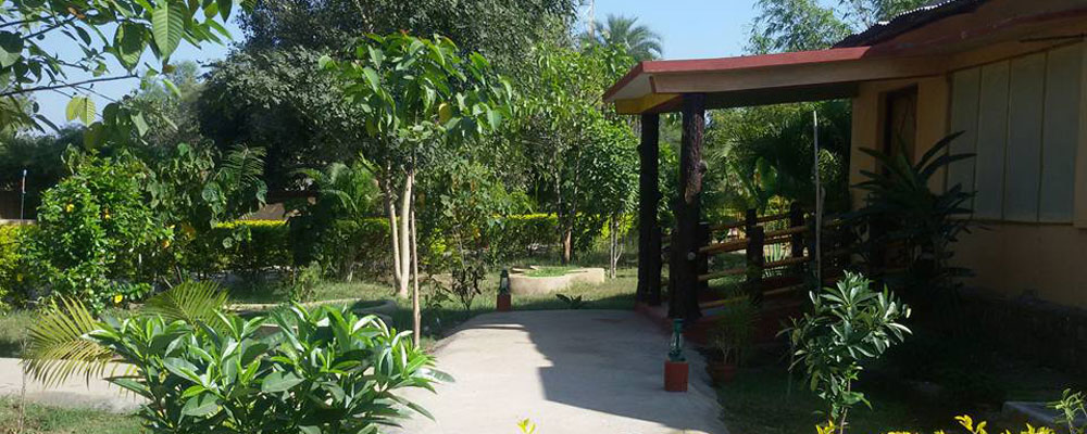 Tiger-Inn-Resort-Bandhavgarh-f