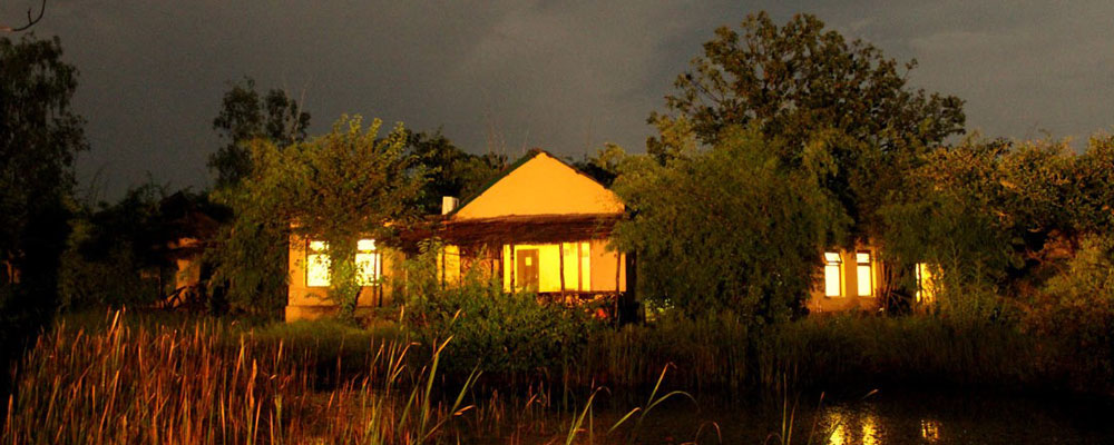 Tigers-Lagoon-Resort-Bandhavgarh-4