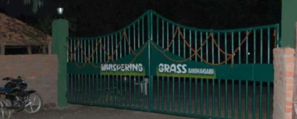Whipring-Grass-Resort