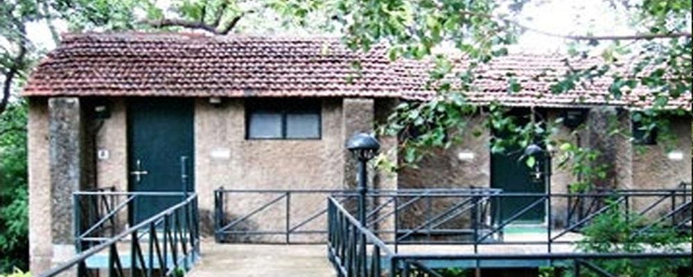White-Tiger-Forest-Lodge-bandhavgarh-1